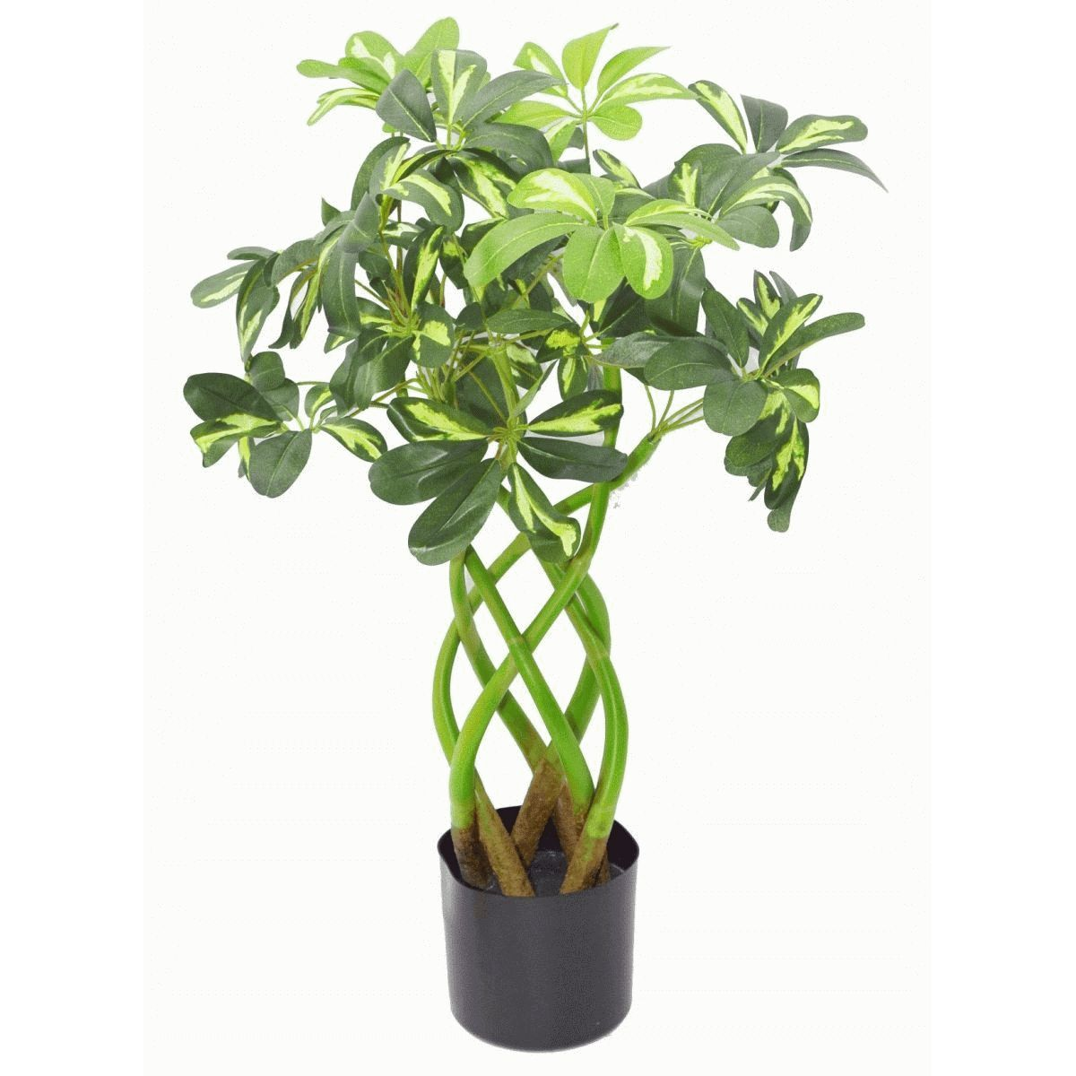 incredibly realistic statement design artificial plants twisted stem schefflera gold capella. Black Bedroom Furniture Sets. Home Design Ideas