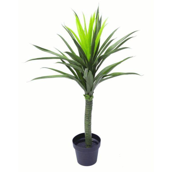Realistic Artificial Yukka Plants