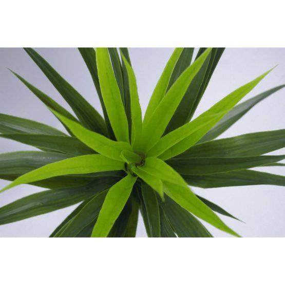 Spiky Artificial Yukka