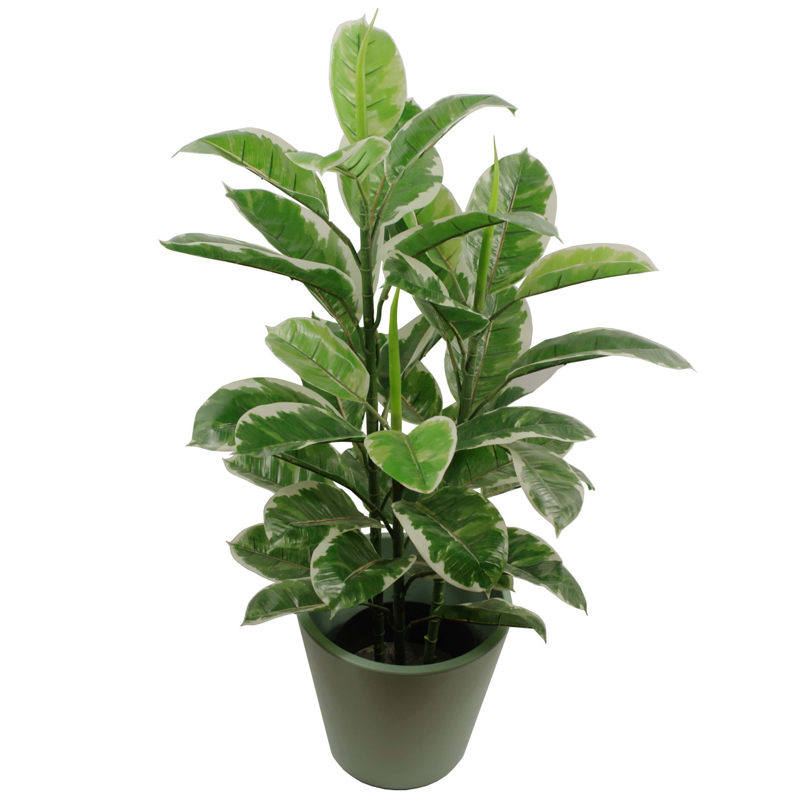90cm large realistic variegated rubber plant artificial for Large garden plants