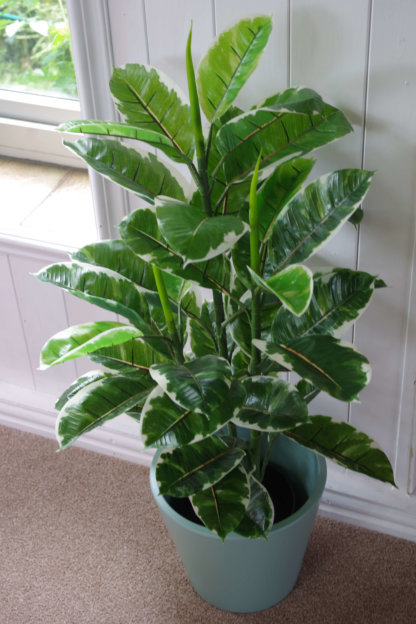 Artificial Rubber Tree by Leaf
