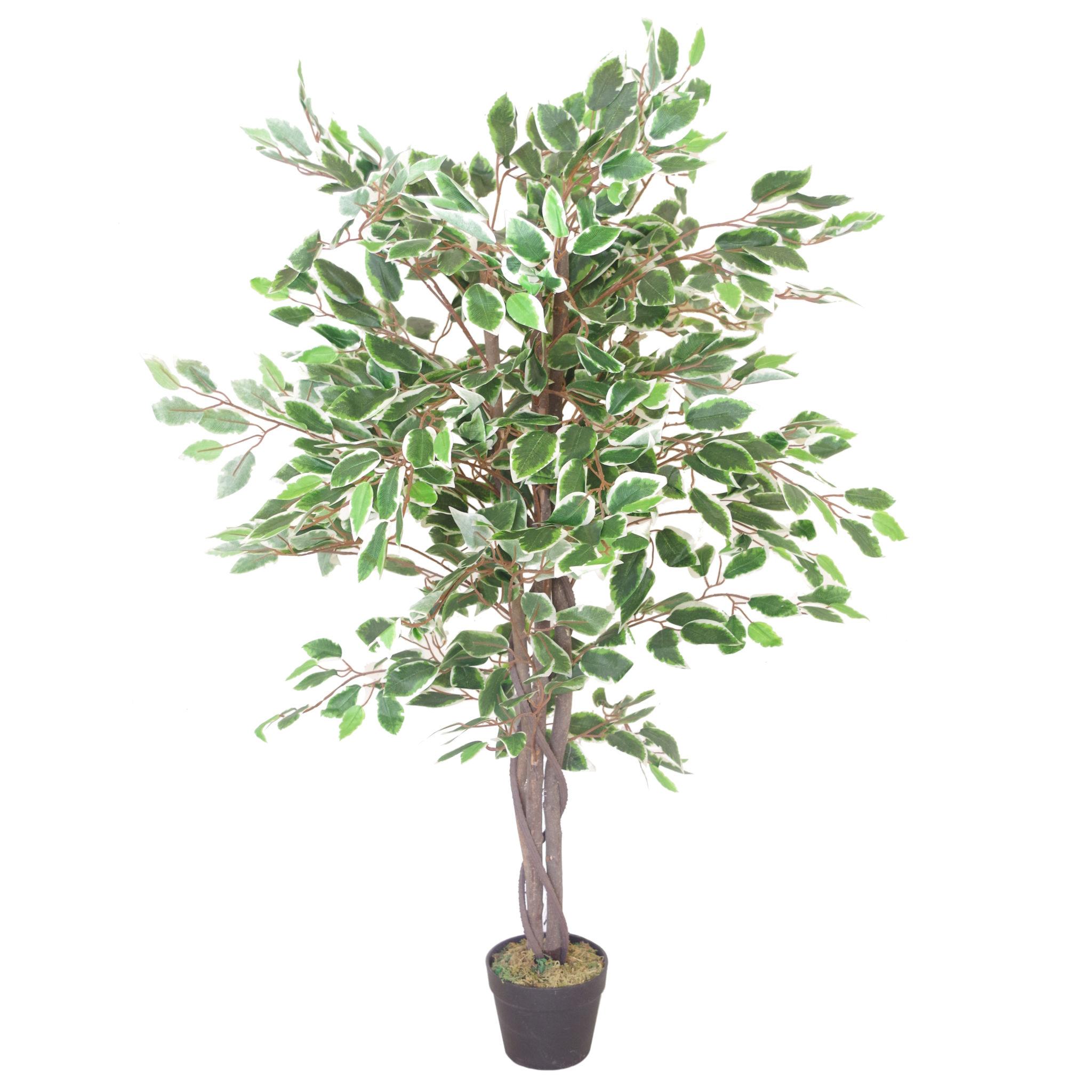 105cm large ultra realistic white edge ficus artificial plant tree. Black Bedroom Furniture Sets. Home Design Ideas