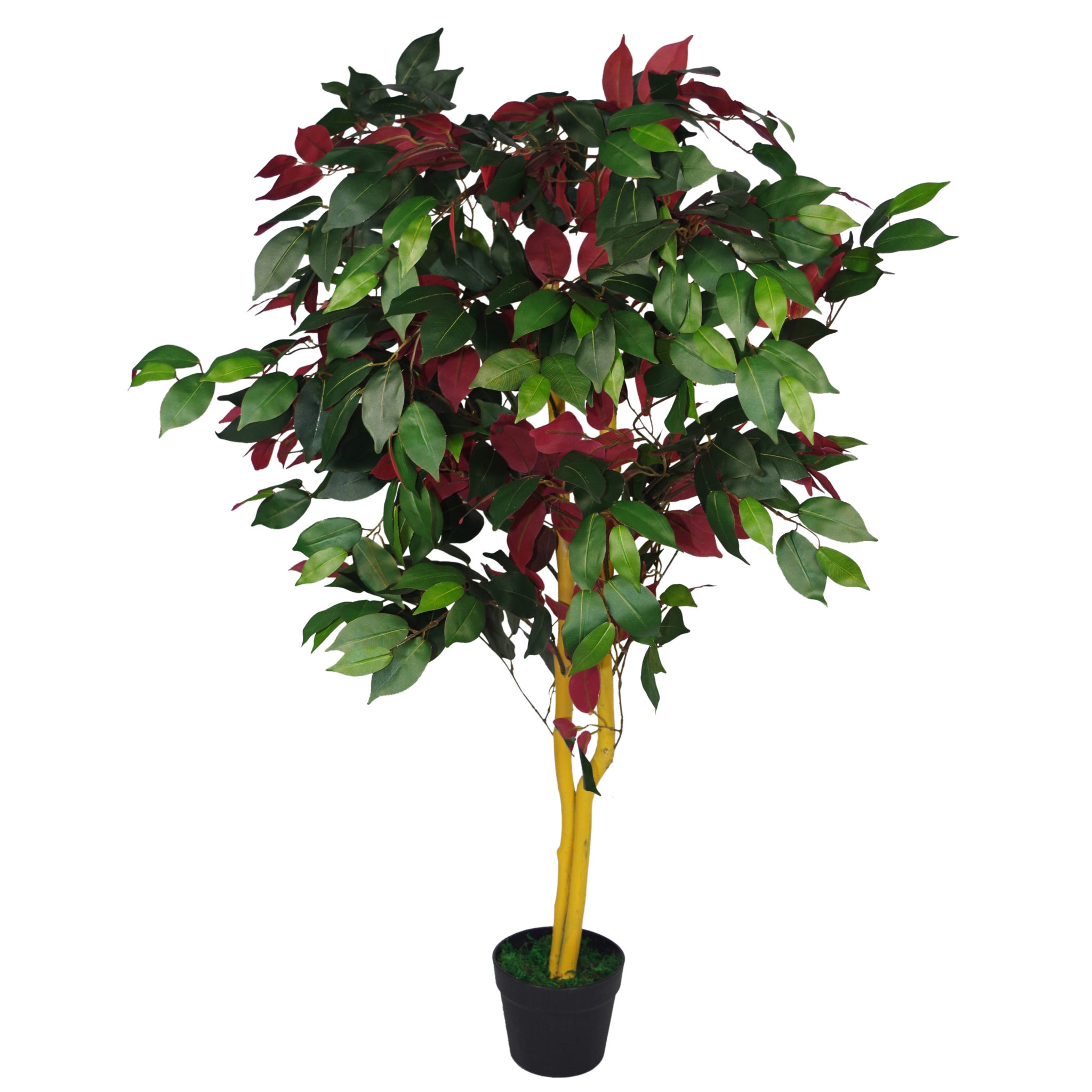 Artificial Trees Plants: 120cm (4ft) Artificial Capensia Tree Ficus Plant