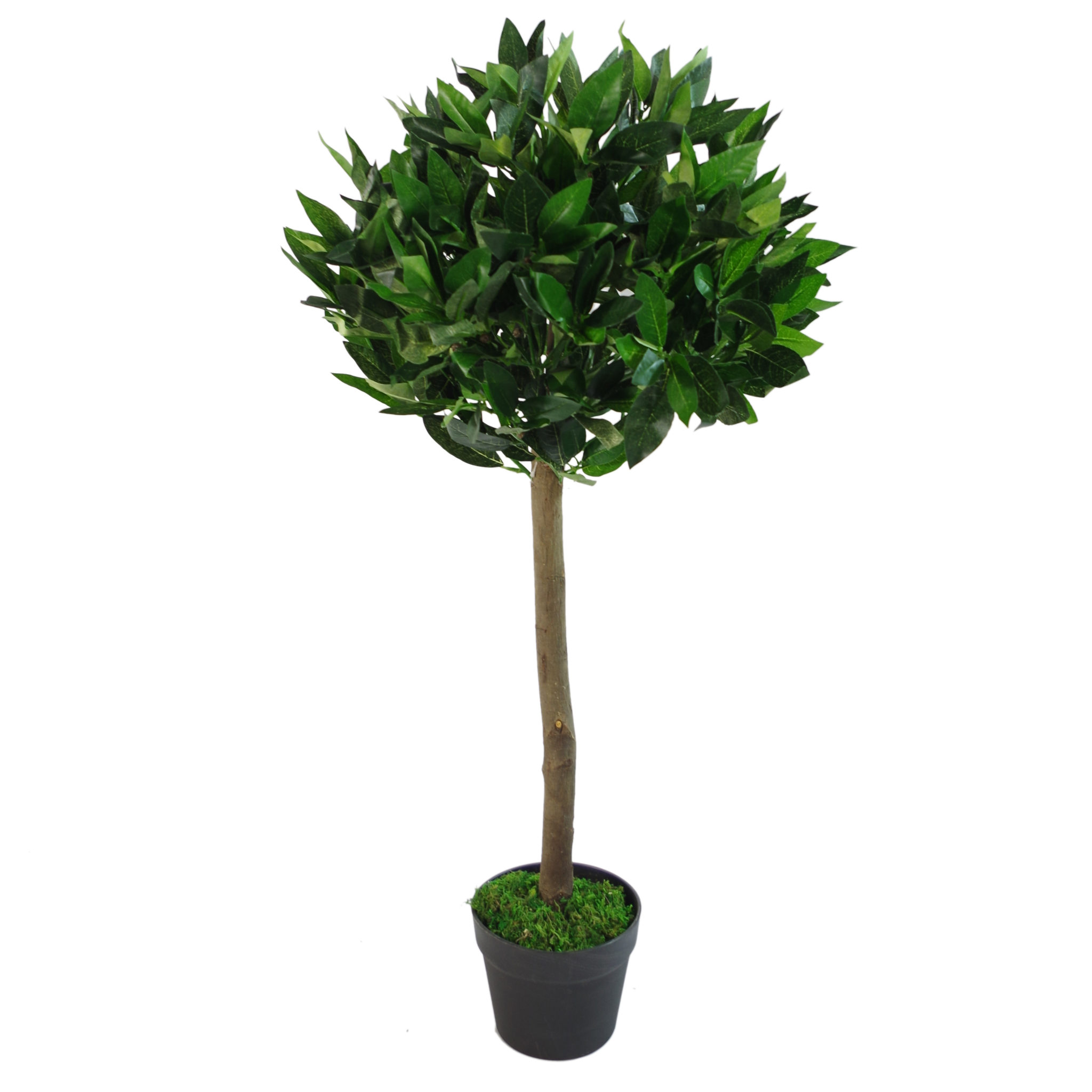 Artificial Topiary Bay Laurel Tree Natural Trunk